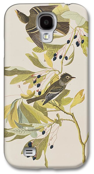 Small Green Crested Flycatcher Galaxy S4 Case by John James Audubon