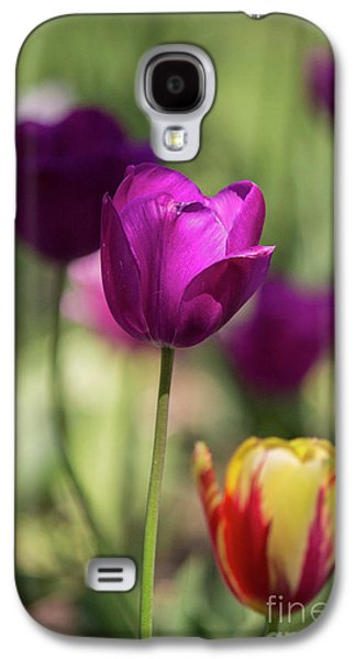 Study Of Tulips Galaxy S4 Case by Doc Braham