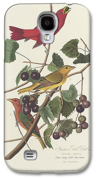 Feather Drawings Galaxy S4 Cases - Summer Red Bird Galaxy S4 Case by John James Audubon