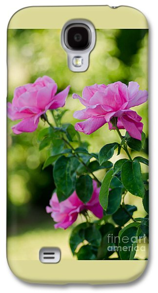 Bloosom Galaxy S4 Cases - The Pink Ones Galaxy S4 Case by Nick  Boren