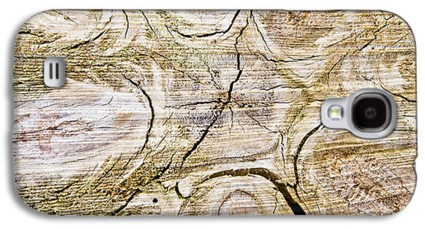 Nature Abstract Galaxy S4 Cases - Tree trunk Galaxy S4 Case by Tom Gowanlock