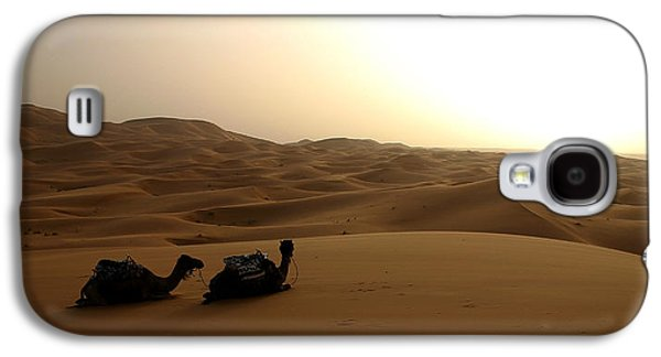 Two Camels At Sunset In The Desert Galaxy S4 Case by Ralph A  Ledergerber-Photography