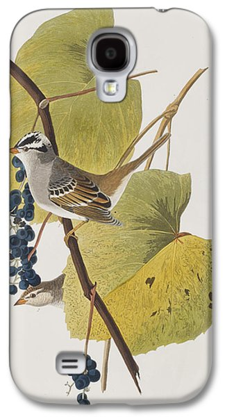 Sparrow Galaxy S4 Cases - White-crowned Sparrow Galaxy S4 Case by John James Audubon