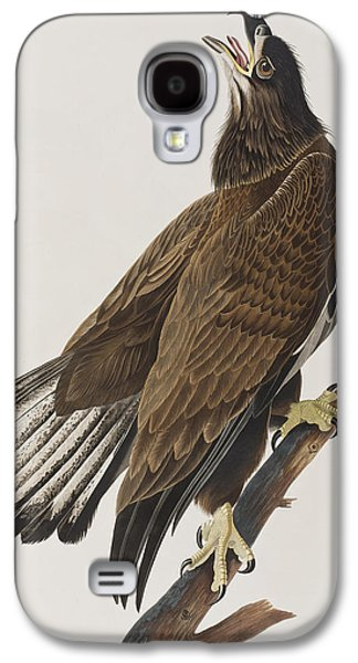 Eagle Paintings Galaxy S4 Cases - White-headed Eagle Galaxy S4 Case by John James Audubon