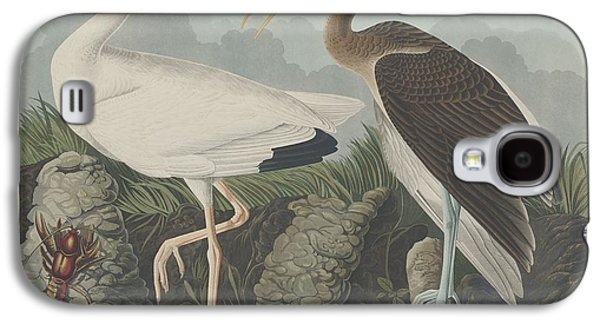 Feather Drawings Galaxy S4 Cases - White Ibis Galaxy S4 Case by John James Audubon