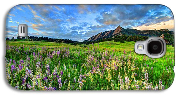 Fort Collins Galaxy S4 Cases - Wildflower Wonder Galaxy S4 Case by Scott Mahon