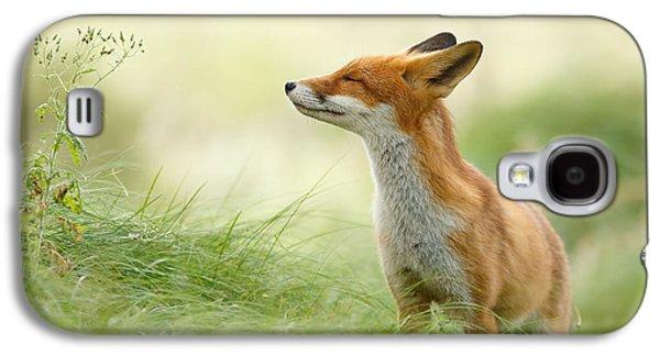 Zen Fox Series - Zen Fox Galaxy S4 Case by Roeselien Raimond