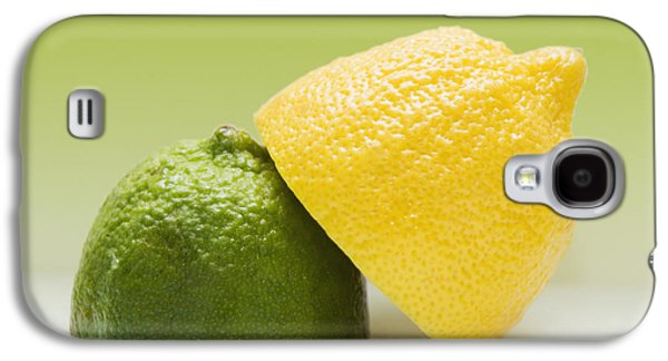 12 Organic Lemon And 12 Lime Galaxy S4 Case by Marlene Ford