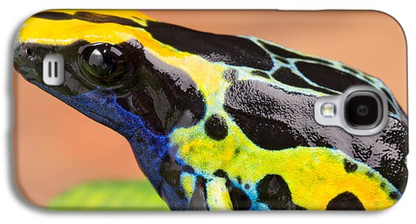 Frogs Photographs Galaxy S4 Cases - Poison dart frog Galaxy S4 Case by Dirk Ercken