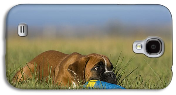 Boxer Galaxy S4 Cases - Boxer Puppy Galaxy S4 Case by Jean-Louis Klein & Marie-Luce Hubert
