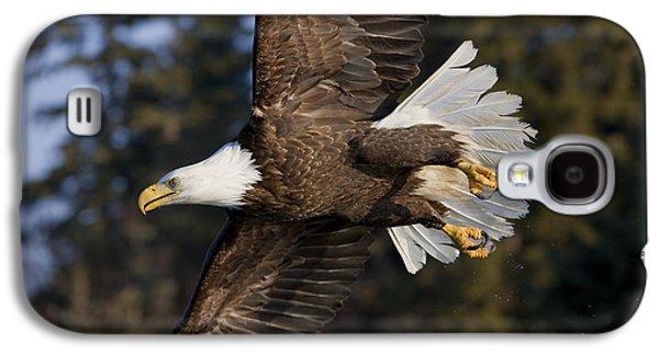 Bald Eagle Galaxy S4 Case by John Hyde - Printscapes