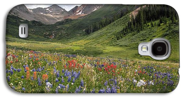 Alpine Flowers In Rustler's Gulch, Usa Galaxy S4 Case by Bob Gibbons