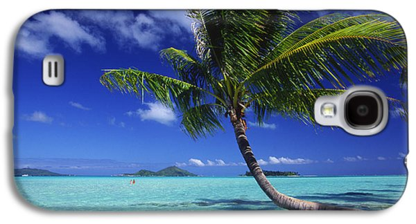 Overhang Photographs Galaxy S4 Cases - Bora Bora, Palm Tree Galaxy S4 Case by Ron Dahlquist - Printscapes