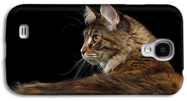 Closeup Maine Coon Cat Portrait Isolated On Black Background Galaxy S4 Case by Sergey Taran