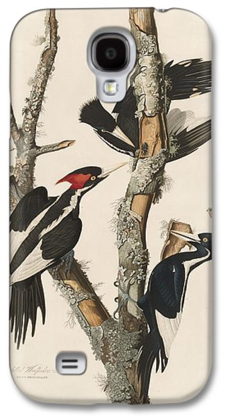 Ivory-billed Woodpecker Galaxy S4 Case by John James Audubon