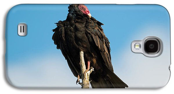 Looking For A Meal Galaxy S4 Case by Mike Dawson