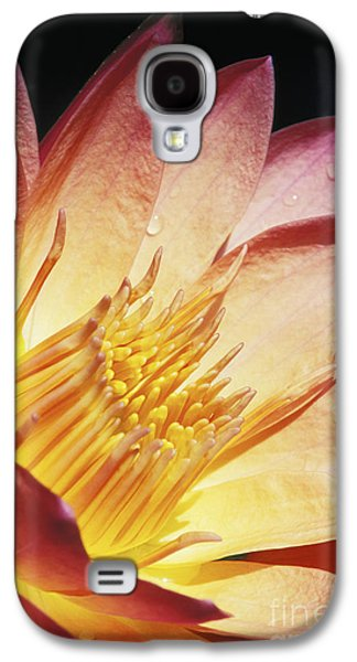 Nature Center Pond Galaxy S4 Cases - Pink Water Lily Galaxy S4 Case by Bill Brennan - Printscapes