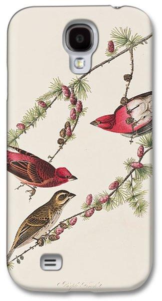 Purple Finch Galaxy S4 Case by John James Audubon