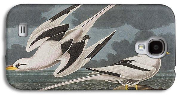 Tropics Galaxy S4 Cases - Tropic Bird Galaxy S4 Case by John James Audubon