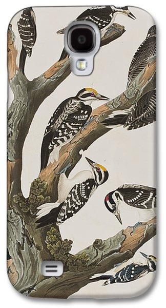 Woodpeckers Galaxy S4 Case by John James Audubon