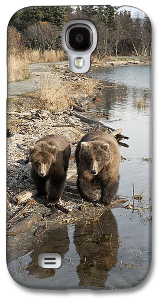 Family Walks Galaxy S4 Cases - Grizzly Bear Ursus Arctos Horribilis Galaxy S4 Case by Matthias Breiter
