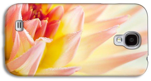 Soft Photographs Galaxy S4 Cases - Dahlia Galaxy S4 Case by Nailia Schwarz