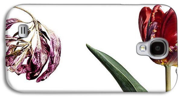 Studio Photographs Galaxy S4 Cases - Fading Beauty Galaxy S4 Case by Nailia Schwarz