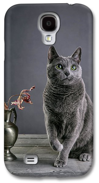 Grey Photographs Galaxy S4 Cases - Russian Blue Cat Galaxy S4 Case by Nailia Schwarz