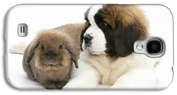 Domesticated Animals Galaxy S4 Cases - Saint Bernard Puppy With Rabbit Galaxy S4 Case by Mark Taylor