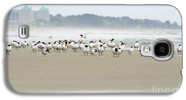 Seabirds On Hilton Head Shoreline Galaxy S4 Case by Angela Rath
