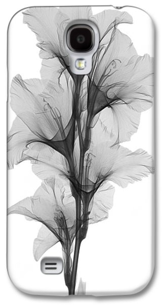 Gladiolas Galaxy S4 Cases - X-ray Of A Gladiola Flower Galaxy S4 Case by Ted Kinsman