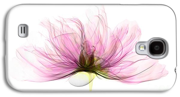 Science Collection - Galaxy S4 Cases - X-ray Of Peony Flower Galaxy S4 Case by Ted Kinsman