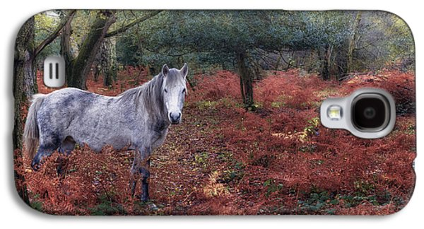 New Forest - England Galaxy S4 Case by Joana Kruse