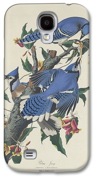 Feather Drawings Galaxy S4 Cases - Blue Jay Galaxy S4 Case by John James Audubon