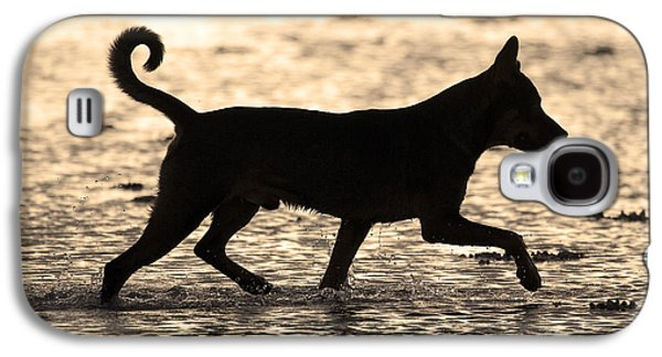 Dog Trots Galaxy S4 Cases - Fishing Dog Of Polynesia Galaxy S4 Case by Jean-Louis Klein & Marie-Luce Hubert