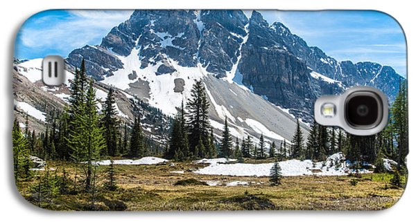 Canadian Pyrography Galaxy S4 Cases - Mountains #4 Galaxy S4 Case by Olga Photography