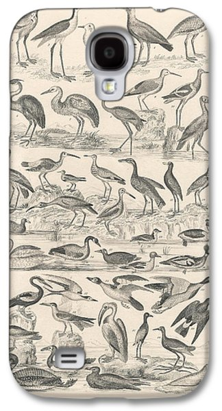 Botanical Galaxy S4 Cases - Ornithology Galaxy S4 Case by Captn Brown