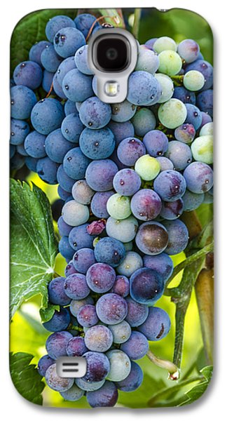 Red Wine Grapes Galaxy S4 Case by Teri Virbickis