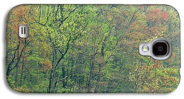 Mud Season Galaxy S4 Cases - Spring Forest in Bloom Galaxy S4 Case by Dean Pennala