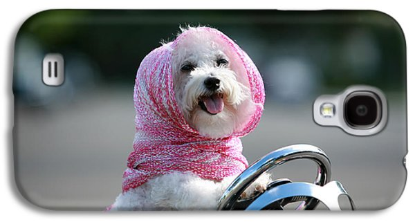 Best Friend Photographs Galaxy S4 Cases - Fifi goes for a ride Galaxy S4 Case by Michael Ledray