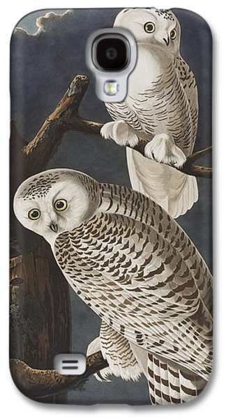 Snowy Evening Galaxy S4 Cases - Snowy Owl Galaxy S4 Case by John James Audubon