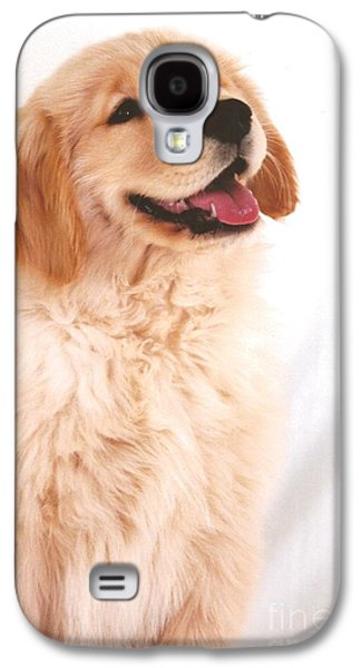 Puppies Galaxy S4 Cases - #501 27 Golden Giggle Golden Retriever Galaxy S4 Case by Robin Lee Mccarthy Photography