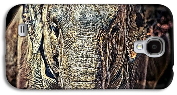 Elephant Collection Galaxy S4 Case by Marvin Blaine
