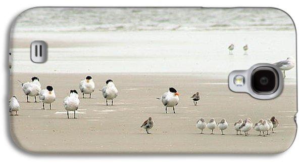 A Gaggle Of Seabirds Galaxy S4 Case by Angela Rath