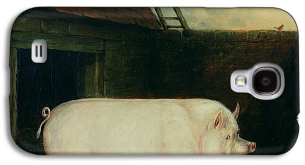 A Pig In Its Sty Galaxy S4 Case by E M Fox