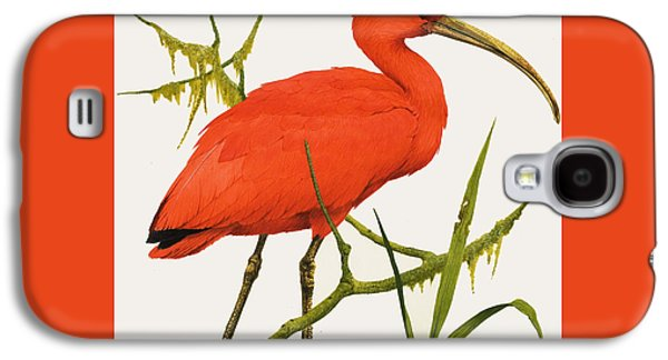 A Scarlet Ibis From South America Galaxy S4 Case by Kenneth Lilly