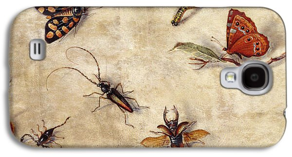 A Study Of Various Insects, Fruit And Animals Galaxy S4 Case by Jan Van Kessel the Elder
