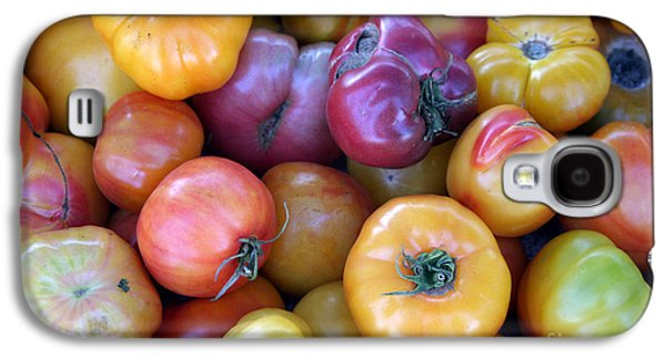 Michael Sweet Galaxy S4 Cases - A trip through the farmers market featuring heirloom tomatoes. Galaxy S4 Case by Michael Ledray