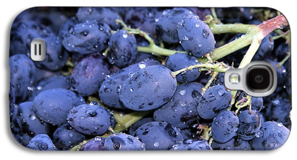 Michael Sweet Galaxy S4 Cases - A trip through the farmers market featuring Purple Grapes. Galaxy S4 Case by Michael Ledray