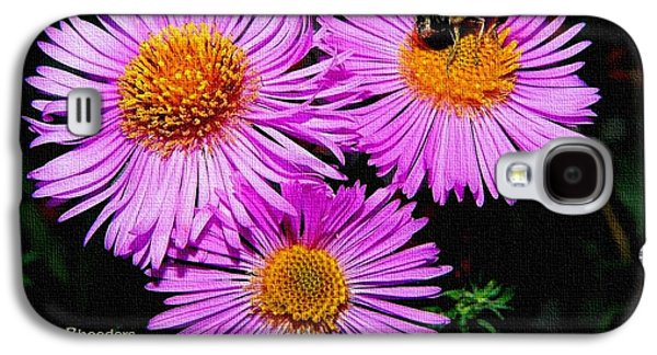Business Galaxy S4 Cases - Absolute Flower Gloria Catus 1 no. 3. H a Galaxy S4 Case by Gert J Rheeders